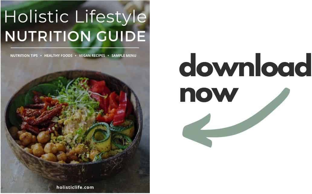 Holistic Lifestyle Food Guide Free Download
