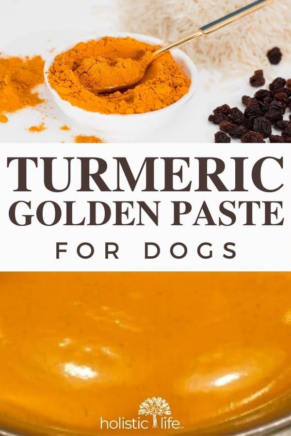 Turmeric Golden Paste for Dogs